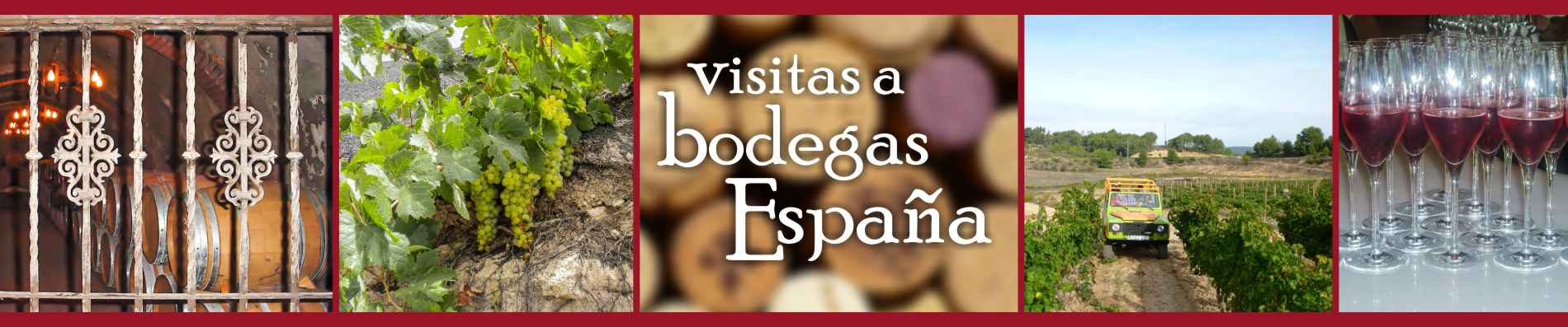 Visit to wine cellars of Spain